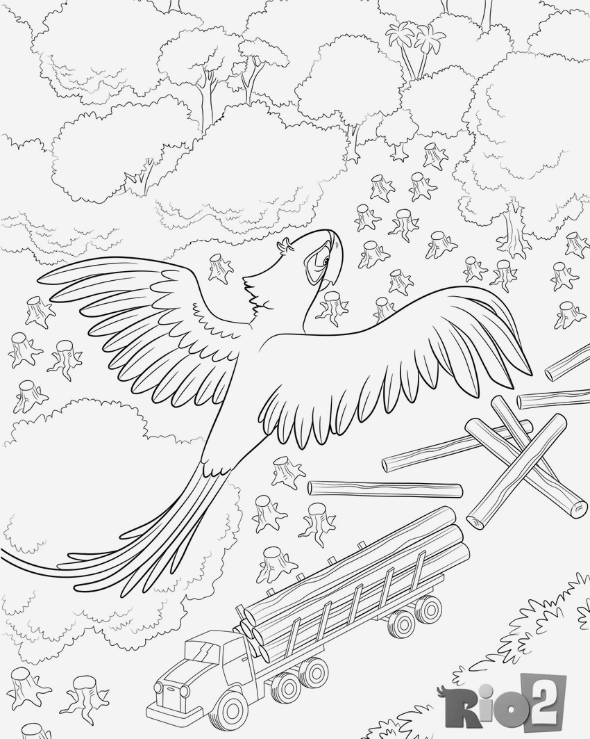 Coloriage Animaux De La Jungle Gratuit Beautiful Coloriage A Imprimer Rio 2 Blu Et De Jungle En Danger Of Coloriage Animaux De La Jungle Gratuit