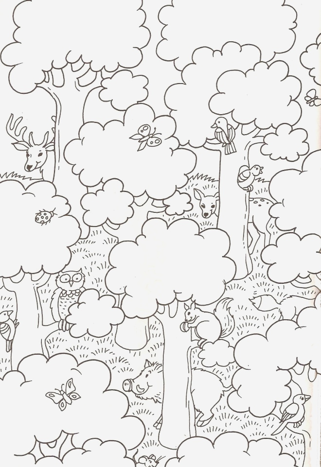 Coloriage Animaux De La Jungle Gratuit Beautiful Coloriage La forªt Maternelle Dessin Gratuit   Imprimer Of Coloriage Animaux De La Jungle Gratuit