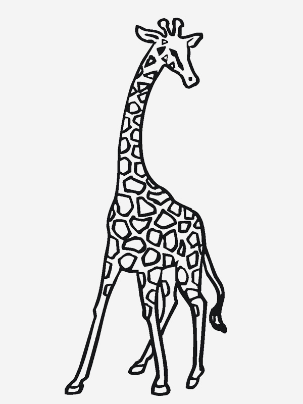 Coloriage Animaux De La Jungle Gratuit Elegant Coloriage Girafe Animaux De La Jungle Of Coloriage Animaux De La Jungle Gratuit
