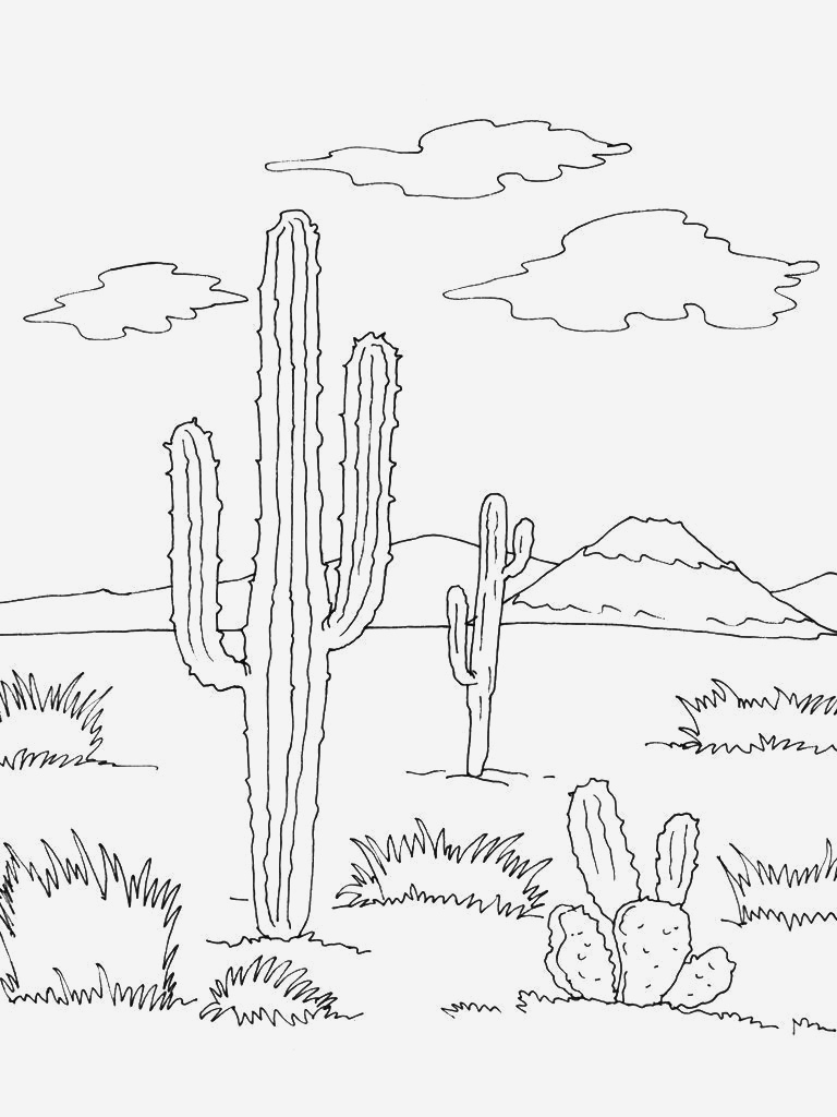 Coloriage Cactus A Imprimer New Coloriage Mexique 12 Coloriage Mexique Coloriages Cartes Of Coloriage Cactus A Imprimer