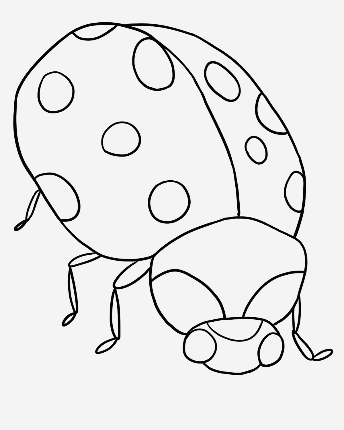 Coloriage Coccinelle Fresh Coccinelle 117 Animaux – Coloriages   Imprimer Of Coloriage Coccinelle