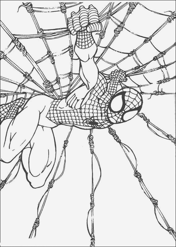 Coloriage De Spiderman Beautiful Coloriage Spiderman 11 Of Coloriage De Spiderman