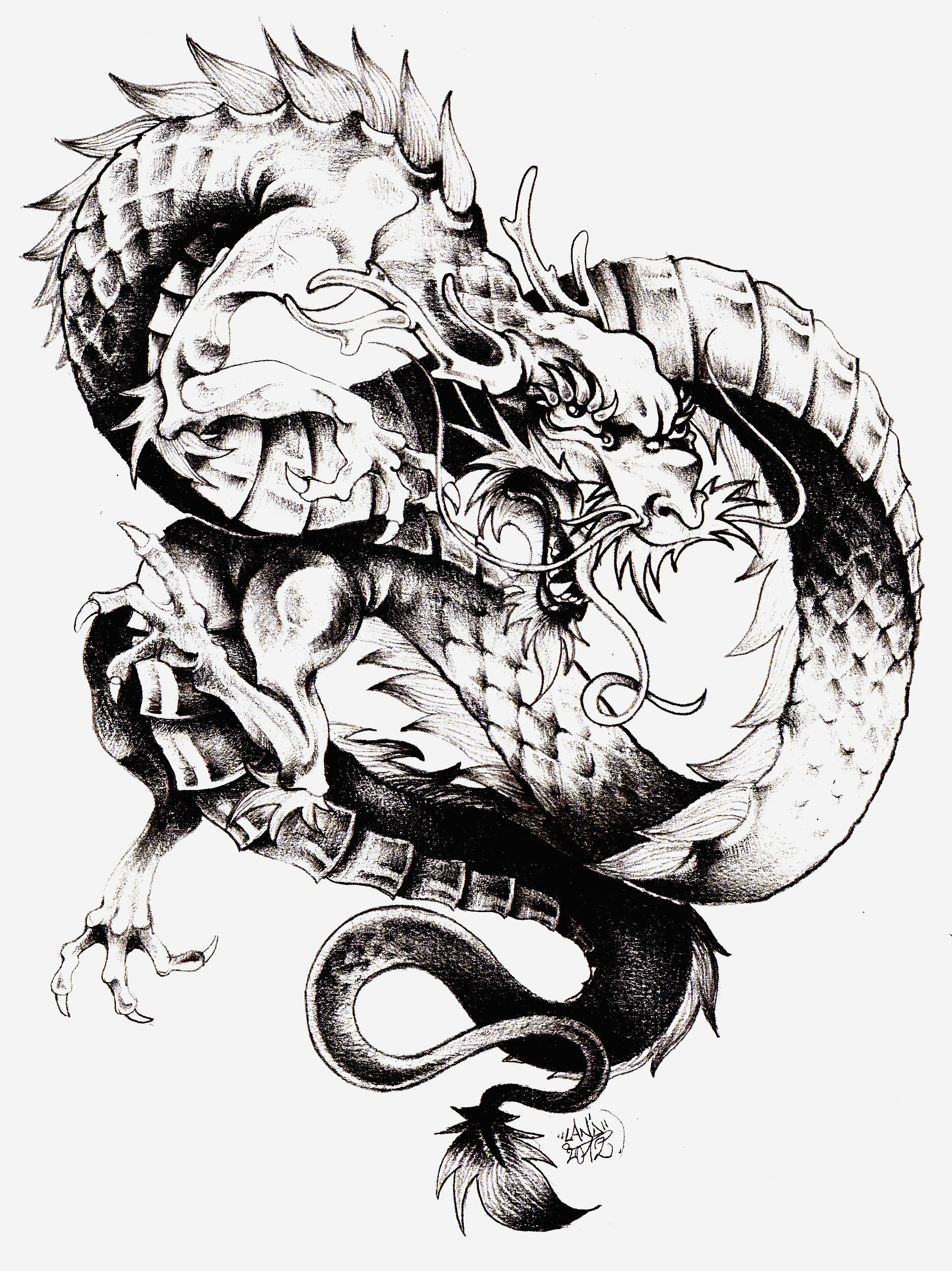 Coloriage Dragon Chinois Elegant Dragon Chine Chine asie Coloriages Difficiles Pour Adultes Of Coloriage Dragon Chinois