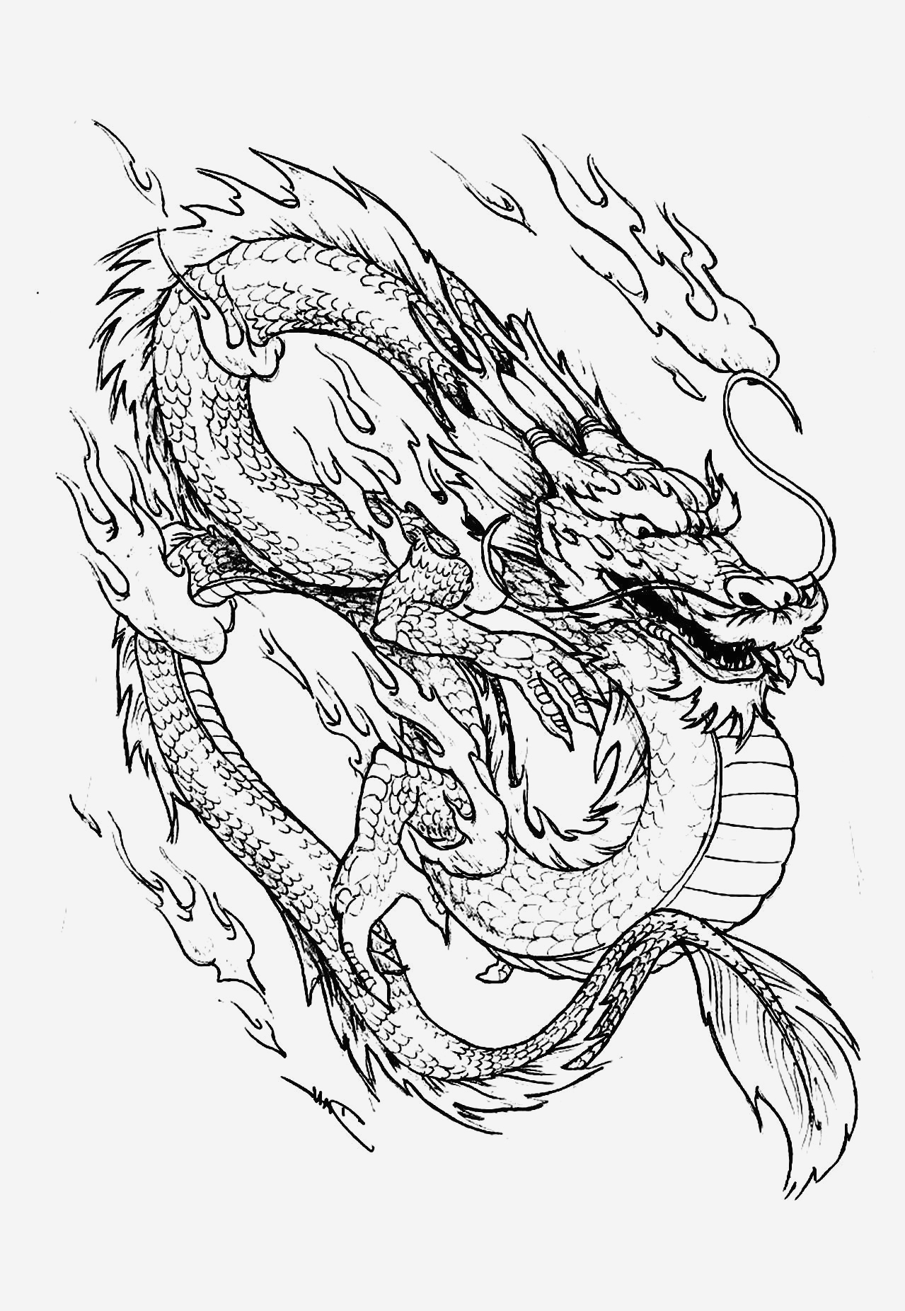 Coloriage Dragon Chinois Inspirational Galerie De Coloriages Gratuits Coloriage Dragon Chinois Of Coloriage Dragon Chinois