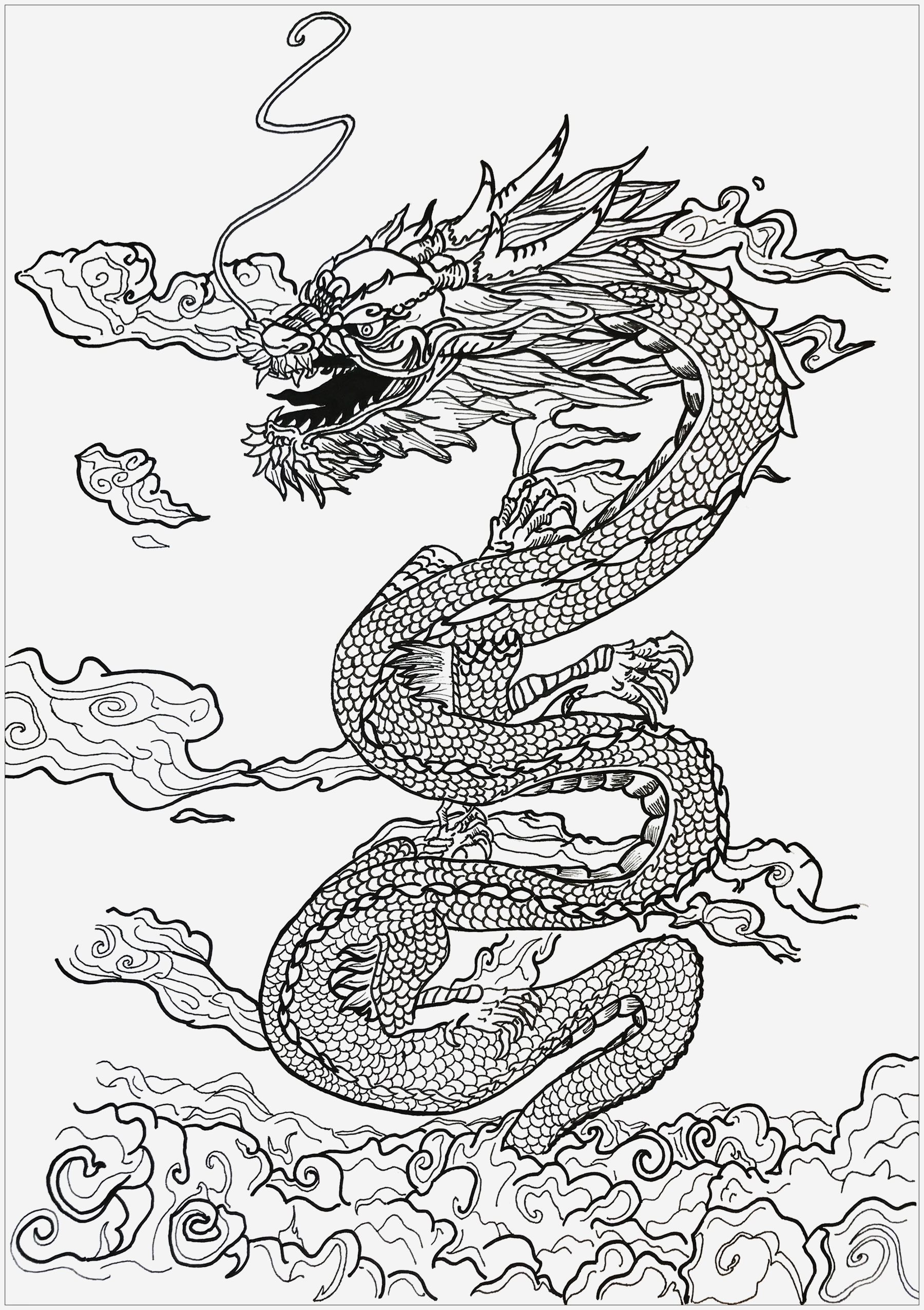 Coloriage Dragon Chinois Inspirational Plexe Dragon Inspiration asiatique Dragons Coloriages Of Coloriage Dragon Chinois