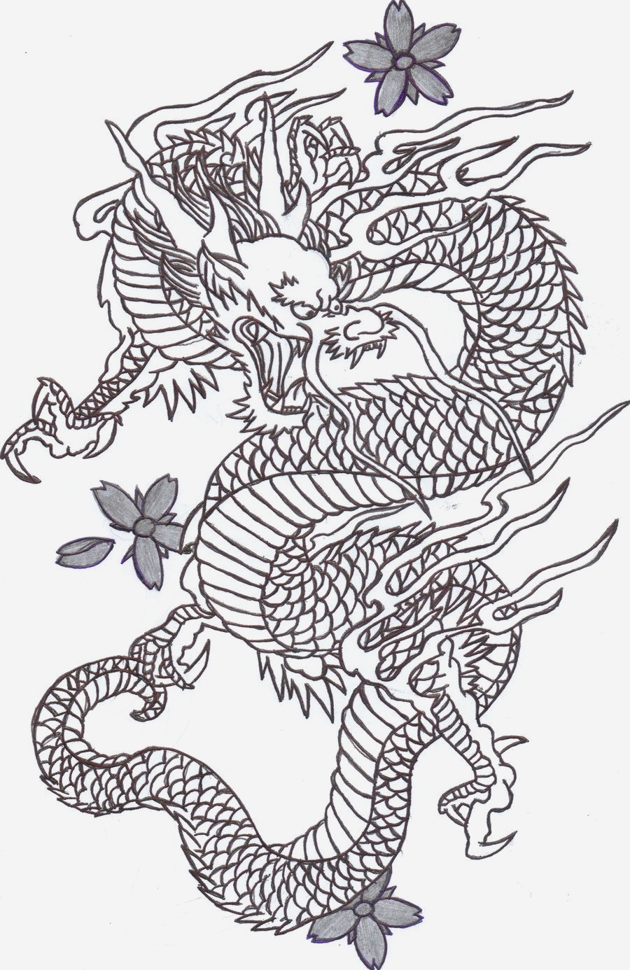 Coloriage Dragon Chinois New Chinese Dragon Head Pattern Of Coloriage Dragon Chinois