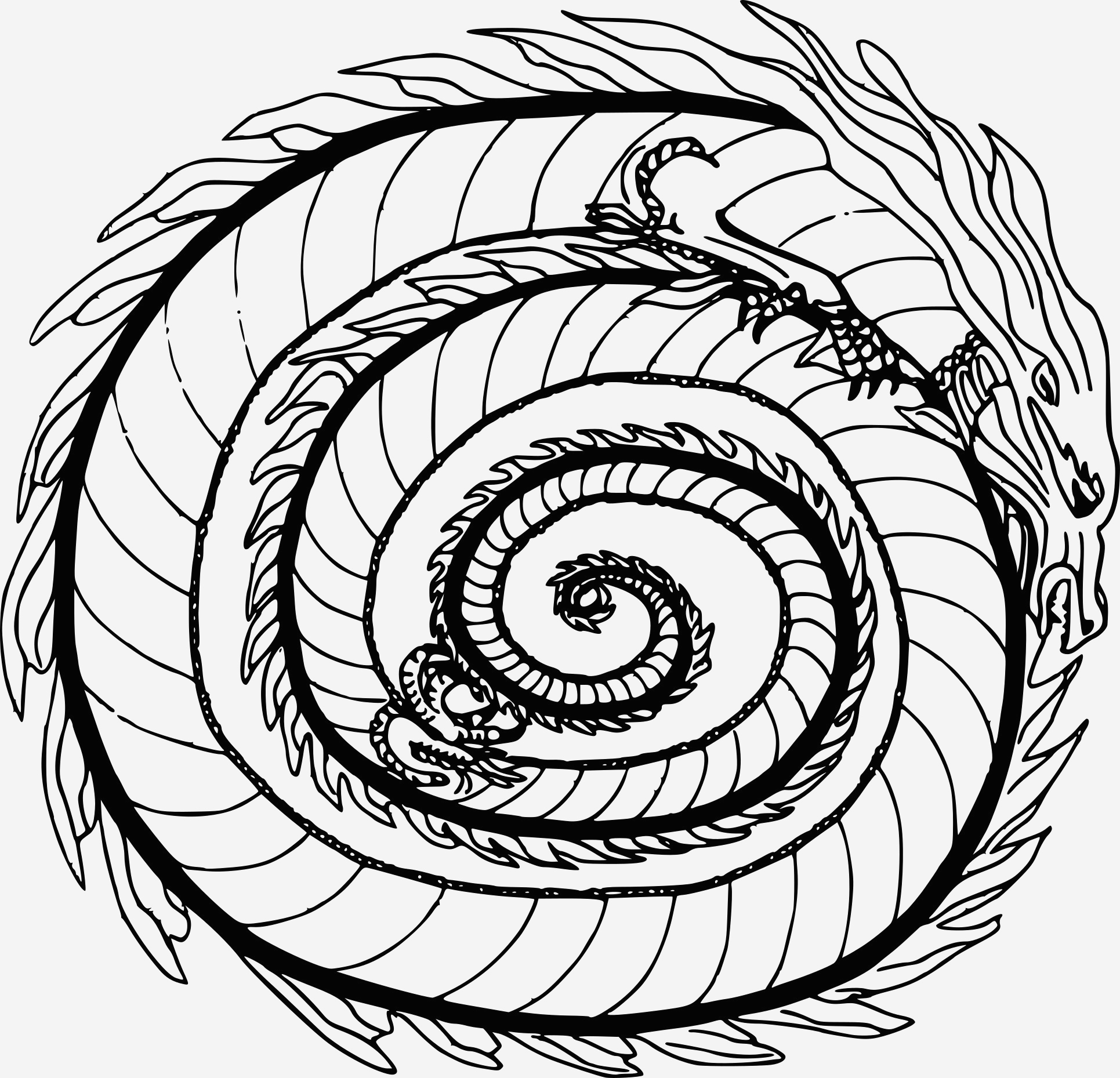 Coloriage Difficile Dragon Elegant Coloriage Mandala Dragon   Imprimer