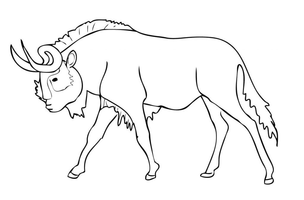 coloriage animaux africain a imprimer
