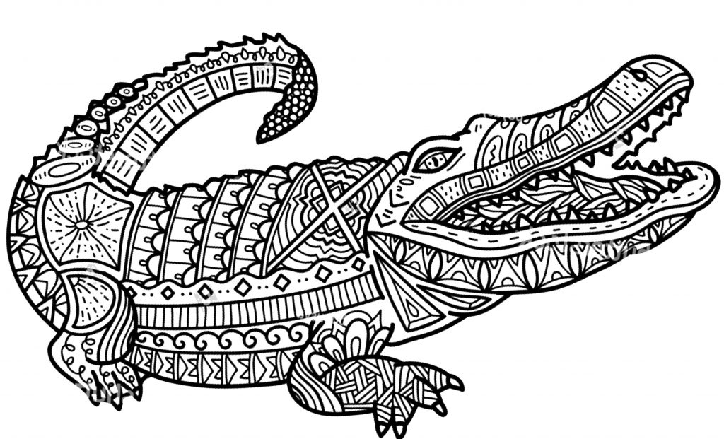 coloriage crocodile gratuit